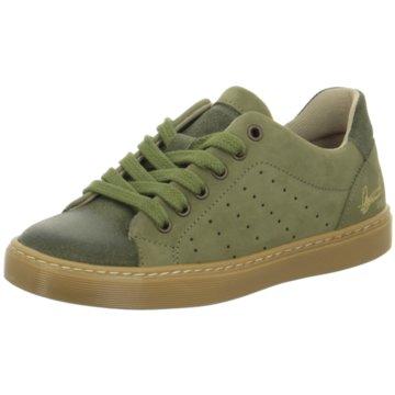 Kid boxer Sneaker Low grün