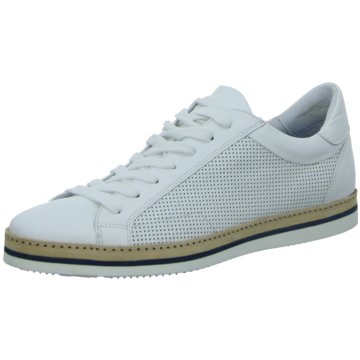 Giorgio Sneaker weiß