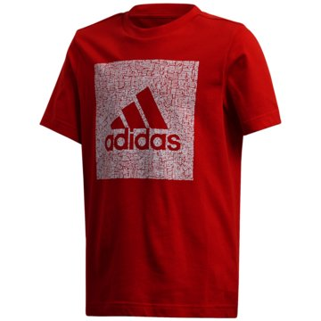 adidas T-ShirtsMUST HAVES BADGE OF SPORT T-SHIRT - FM4489 -