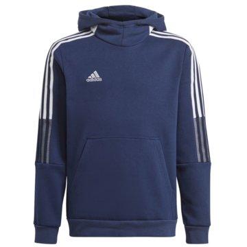 adidas HoodiesTIRO 21 SWEAT HOODIE - GK9680 blau