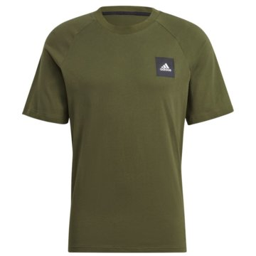 adidas T-ShirtsMUST HAVES STADIUM T-SHIRT - GM6341 grün