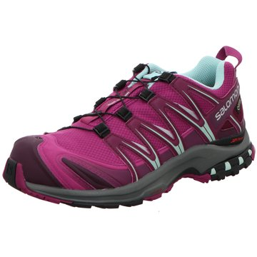 Salomon TrailrunningXA Pro 3D GTX Women lila