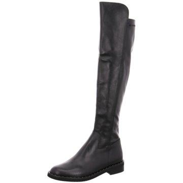 Pegaso Firenze Top Trends Stiefel schwarz