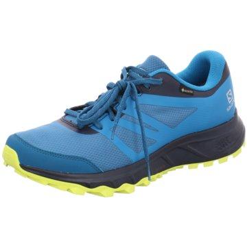 Salomon TrailrunningTRAILSTER 2 GTX LYONS BLUE/N - L40963700 blau