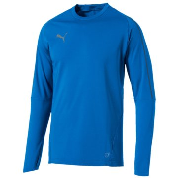 Puma Sweater blau