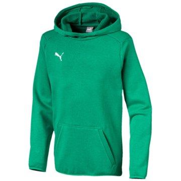Puma Sweatshirts grün