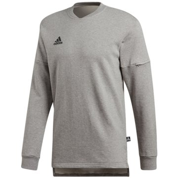 adidas SweaterTango Sweat Jersey LS grau
