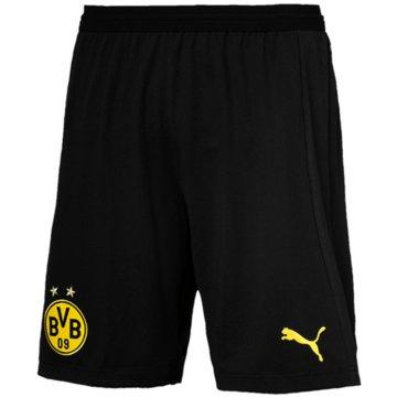 Puma Teamwear & Trikotsätze schwarz