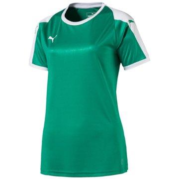Puma Fußballtrikots grün