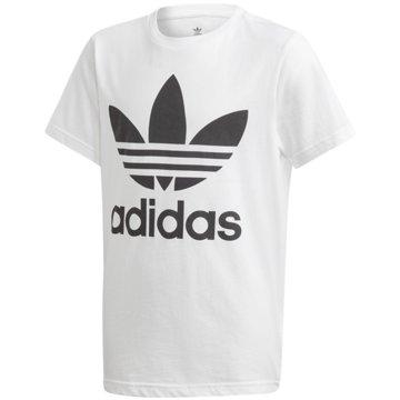 adidas T-ShirtsTREFOIL TEE - DV2904 -