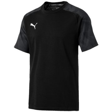 Puma T-ShirtsCUP Sideline Tee -