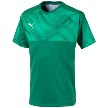 Puma Fan-Trikots grün
