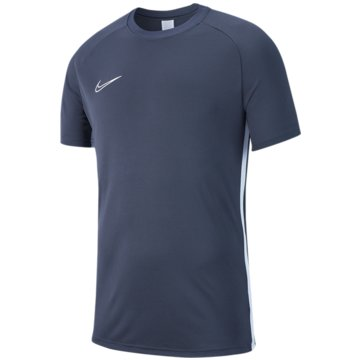 Nike FußballtrikotsNIKE DRI-FIT ACADEMY19 KIDS' SOCCER - AJ9261 grau