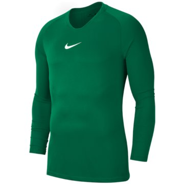 Nike FußballtrikotsDRI-FIT PARK FIRST LAYER - AV2611-302 grün