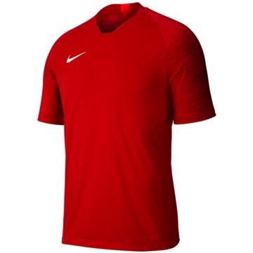 Nike FußballtrikotsDRI-FIT STRIKE - AJ1027-657 rot