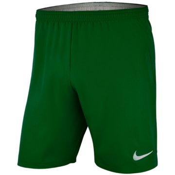 Nike FußballshortsNike Dri-FIT Laser IV - AJ1261-302 grün