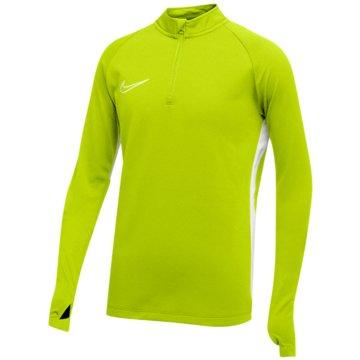 Nike FußballtrikotsNIKE DRI-FIT ACADEMY19 KIDS' SOCCER - AJ9273 grün