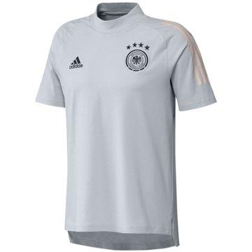 adidas Fan-T-ShirtsDFB T-SHIRT - FI0741 grau