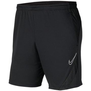 Nike FußballshortsDRI-FIT ACADEMY PRO - BV6924-061 -