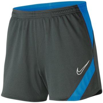 Nike FußballshortsDRI-FIT ACADEMY PRO - BV6938-062 grau