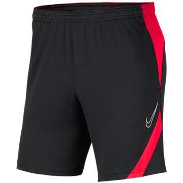 Nike FußballshortsNike Dri-FIT Academy Pro - BV6946-062 grau