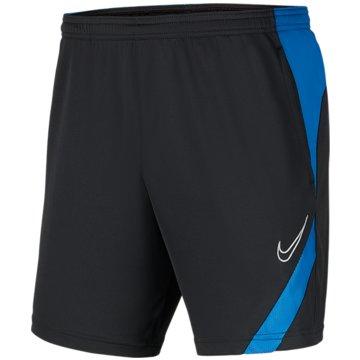 Nike FußballshortsDRI-FIT ACADEMY PRO - BV6946-066 grau