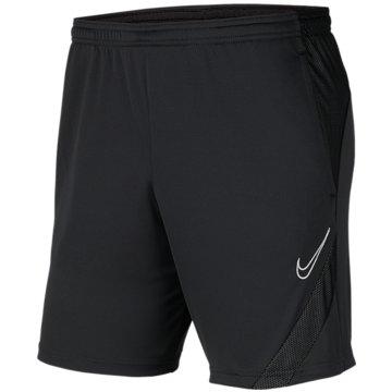 Nike FußballshortsNike Dri-FIT Academy Pro - BV6946-067 grau