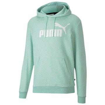Puma Hoodies -