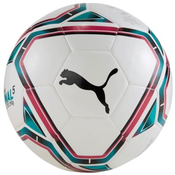 Puma FußbälleteamFINAL 21 Lite Ball 290 -