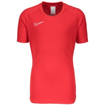 Nike FußballtrikotsNike Dri-FIT Academy19 - AO1454-657 rot