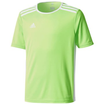 adidas FußballtrikotsENTRADA TRIKOT - CE9755 grün