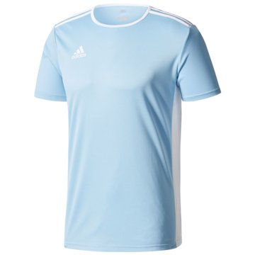 adidas FußballtrikotsEntrada Trikot - CF1045 -