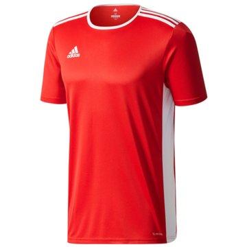 adidas FußballtrikotsEntrada Trikot - CF1050 -