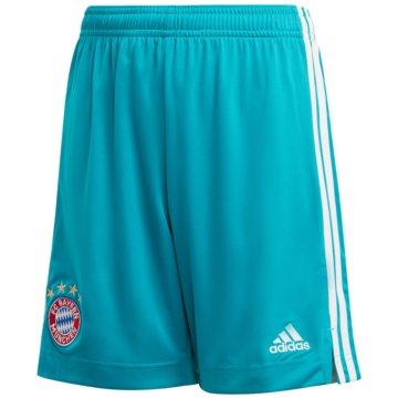 adidas FußballshortsFC Bayern München Torwartshorts - FI6210 -