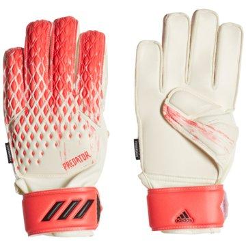 adidas TorwarthandschuhePredator 20 Match Fingersave Torwarthandschuhe - FJ5998 -