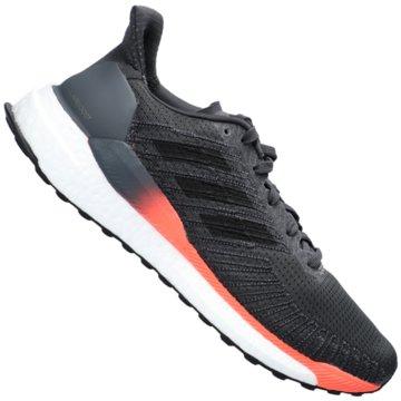 adidas RunningSOLAR BOOST 19 M - EH3503 grau