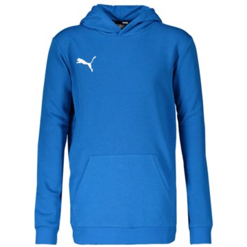 Puma Hoodies blau