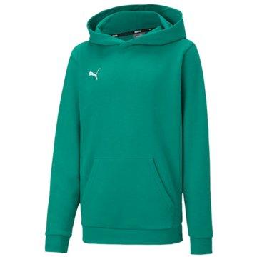 Puma Hoodies grün