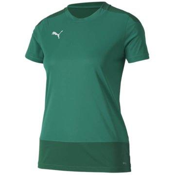 Puma Teamwear & Trikotsätze grün
