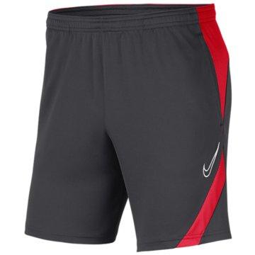 Nike FußballshortsDRI-FIT ACADEMY PRO - BV6924-062 grau