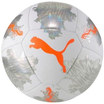 Puma Fußbälle -