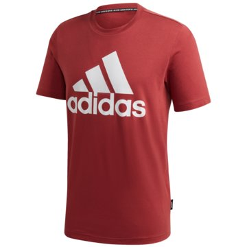 adidas T-ShirtsMH BOS TEE - GC7351 -