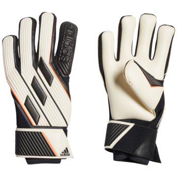 adidas TorwarthandschuheTiro Glove Pro weiß