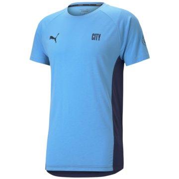 Puma Fan-T-ShirtsMCFC EVOSTRIPE TEE - 758704 blau