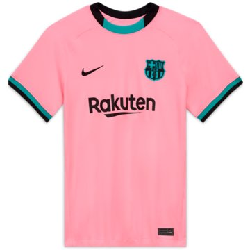 Nike Fan-TrikotsFC BARCELONA 2020/21 STADIUM THIRD - CK7850-654 -