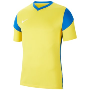 Nike FußballtrikotsDRI-FIT PARK DERBY 3 - CW3826-720 -