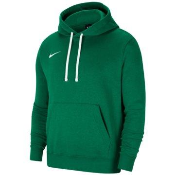 Nike HoodiesPARK - CW6894-302 -