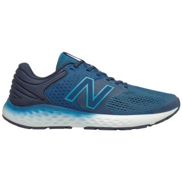 New Balance RunningM520LN7 - M520LN7 blau