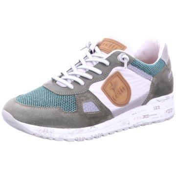 Cetti Sportlicher SchnürschuhSneaker grün