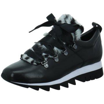 Tizian Sneaker Low schwarz